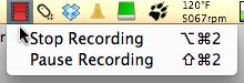 Camtasia stop recording