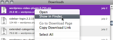 Firefox downloads window