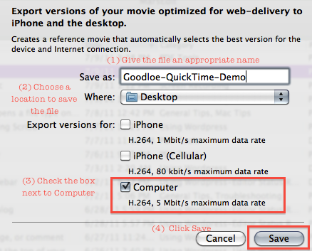 Quicktime web export options