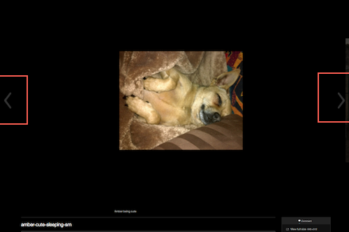 wp-carousel-slideshow-format