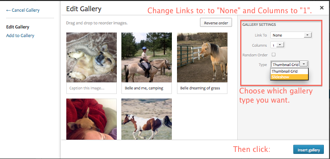 wp-edit-gallery-settings
